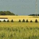 Invertir en campos en Uruguay
