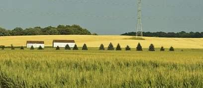 Cómo invertir en campos en Uruguay